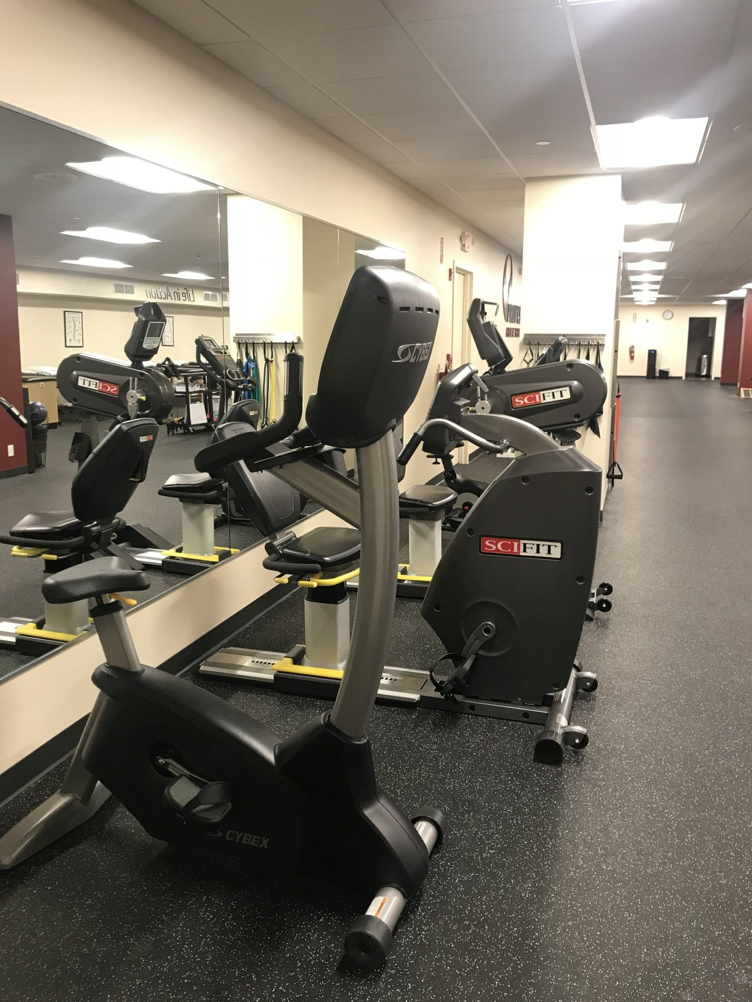This is an image of the bikes at our physical therapy clinic in New Rochelle, New York. Bikes are great for leg workouts reducing knee pain.