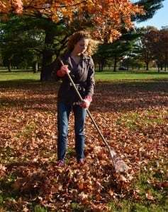 Proper Raking Technique - Professional Physical Therapy