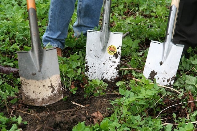 Ready For Gardening?